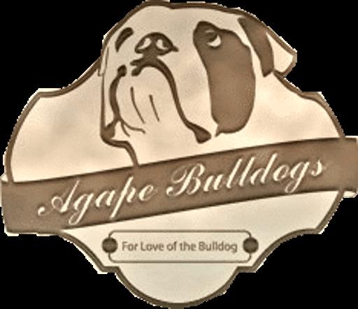 Agape Bulldogs